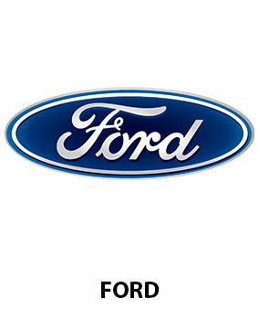 amortizor directie ford